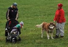 psí důchodce - člen rodiny